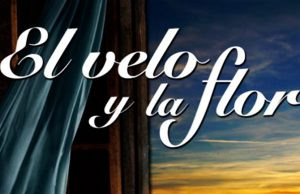 'El velo y la flor' por Margarita Marín