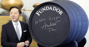 Bodegas Fundador, El Futuro de las Antiguas Domecq