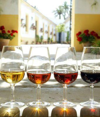 Gama de Vinos de Jerez