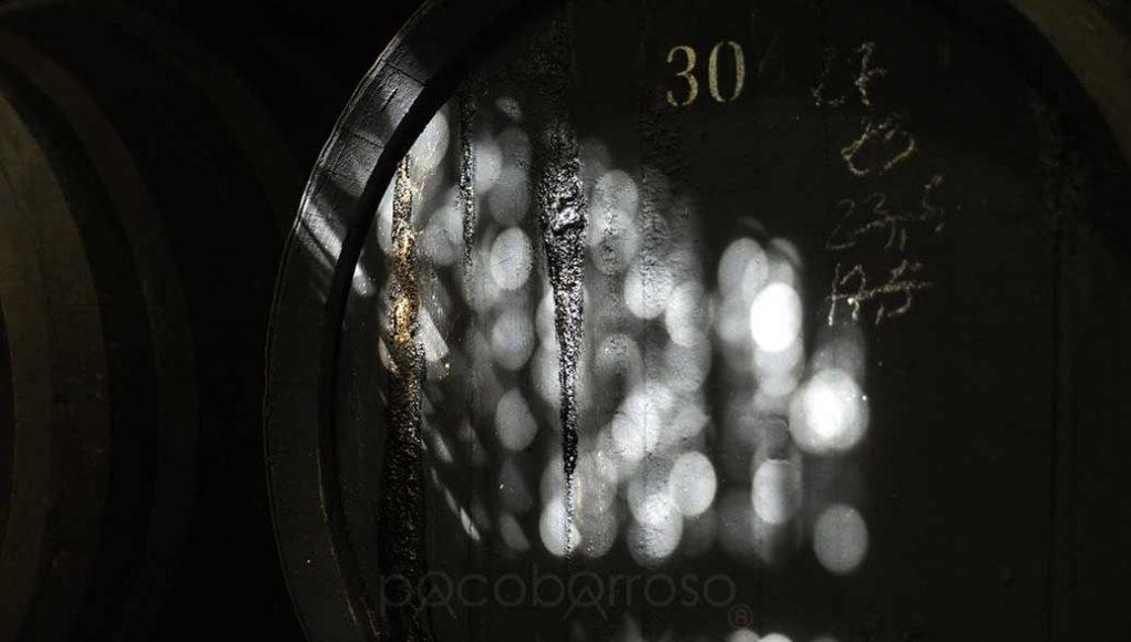 La Bodega por Paco Barroso