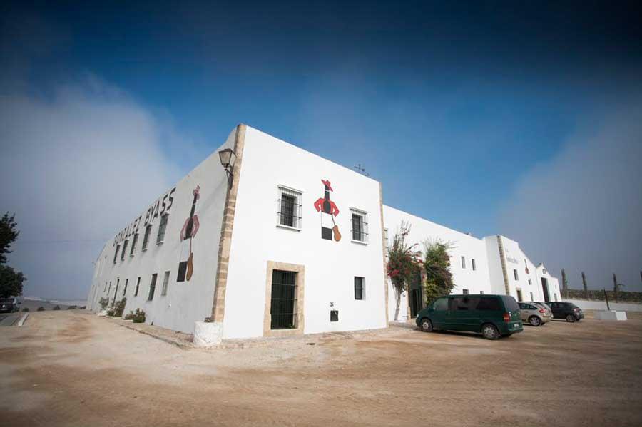 González Byass recupera el cultivo y la vinificación de la Pedro Ximénez en la D.O. Jerez