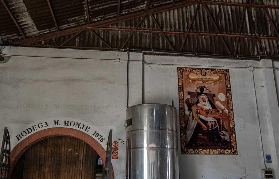 Trabajos de vendimia en la Cooperativa Vitivinícola Jerezana Nuestra Señora de Las Angustias