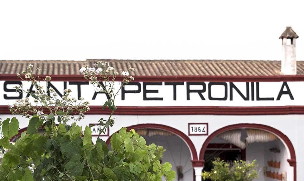 Viña y Bodega Santa Petronila